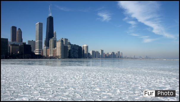Wallpapers - Fur Photography - Winter in America, Chicago, Illinois, USA